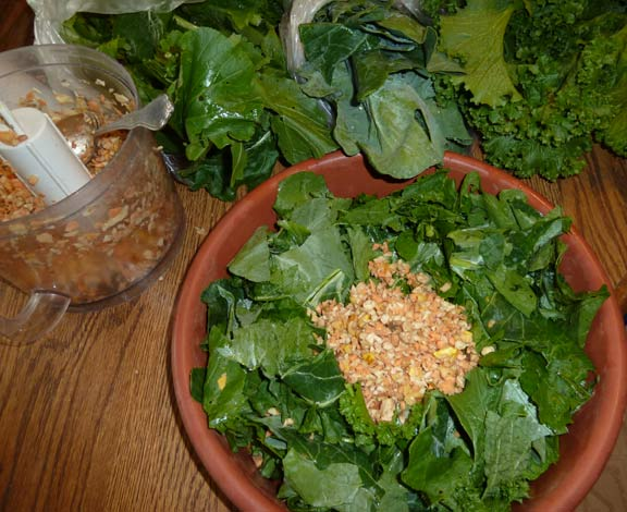 Picture of a typical salad